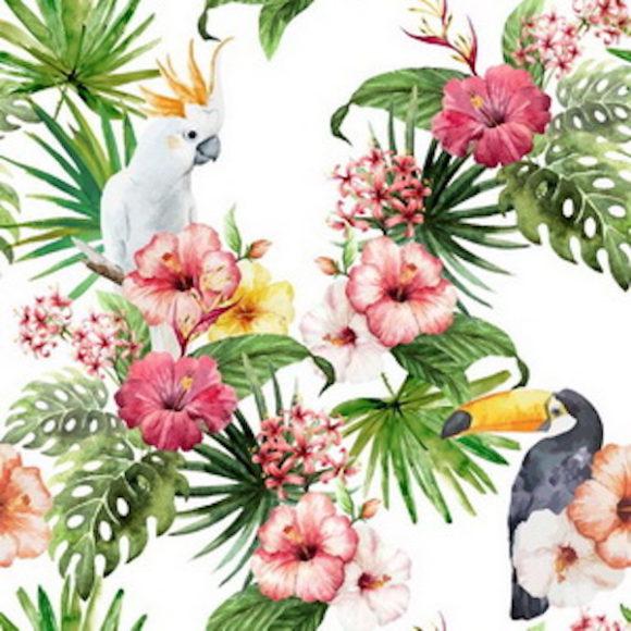 Toucan - Bouquet_resize