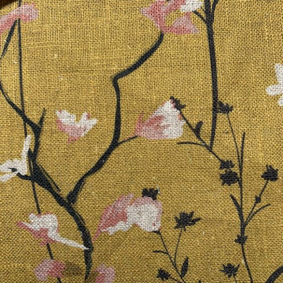 Wild Flowers Dandelion